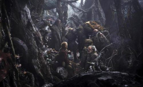 New photo from The Hobbit: The Desolation of Smaug.