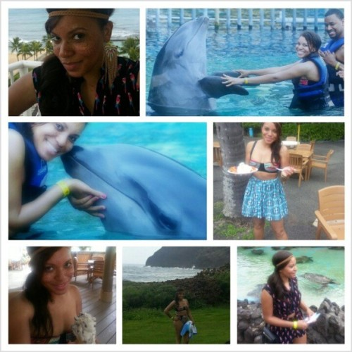 We gettin it in over here lol kissing dolphins, exploring mountains, and eating junk food..Funnel cake and oreo cookie ice cream mmmmm…#sealifepark #dolphins #Honolulu #Hawaii #tribalprint #highwaistswimsuit #parrotprint #tiefront #romper