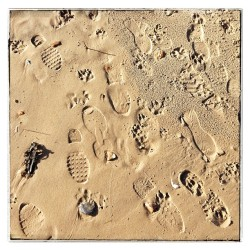 Signs of life on the #beach #footprints #pawprints (at Sandbanks Beach)