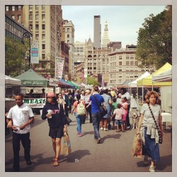 at Union Square Greenmarket