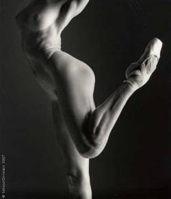 marcedith:  …Howard Schatz…