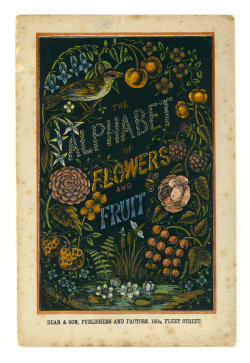 what-floats-my-boat:  The Alphabet of Flowers and Fruits1871-1890?(via University of Washington Digital Collections)