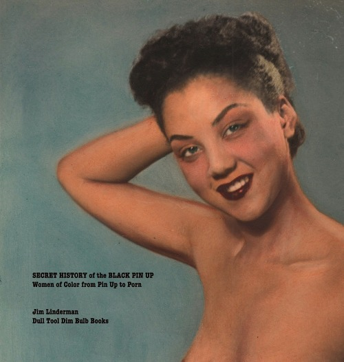 Secret  History of the Black Pin Up : Women of Color from Pin Up to PornEbook is $5.99  HERE