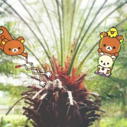 Very naughty Rilakkuma!