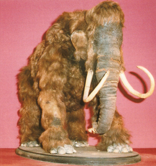 Harryhausen mammoth