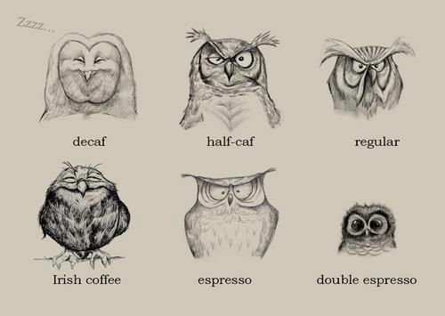 know your coffee effect