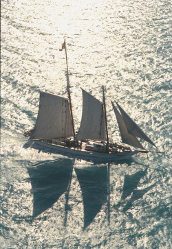 Title: Schooner Western Union returning to Key West, Florida Date: February 1985 General note: The schooner Western Union, built in Key West, Florida, in 1939, operated as a cable-laying vessel until its retirement in 1974. It was listed on the National Register of Historic Places in 1984 and designated as the flagship of the State of Florida in 2012. Repository: State Library and Archives of Florida, 500 S. Bronough St., Tallahassee, FL 32399-0250 USA. Contact: 850.245.6700. Archives@dos.myflorida.com Persistent URL: floridamemory.com/items/show/99595