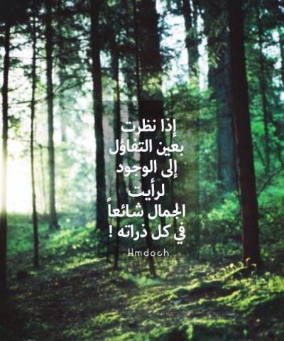 احبك ذاتي بوابة 2013 tumblr_n2h28uHwp81rs