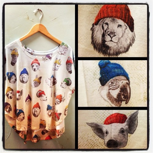 Hipster Critter Tee…I don't know about you, but I'm in love with this shirt… (at Downtown Cowgirl)