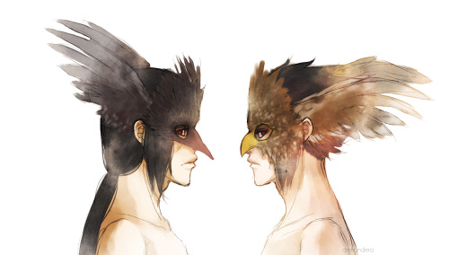 arishandera:  The Crow and the HawkI love the look of those feathered masks and just had to try my hand at drawing them. And of course these brothers manage to weasel themselves in at some point of my doodlings.