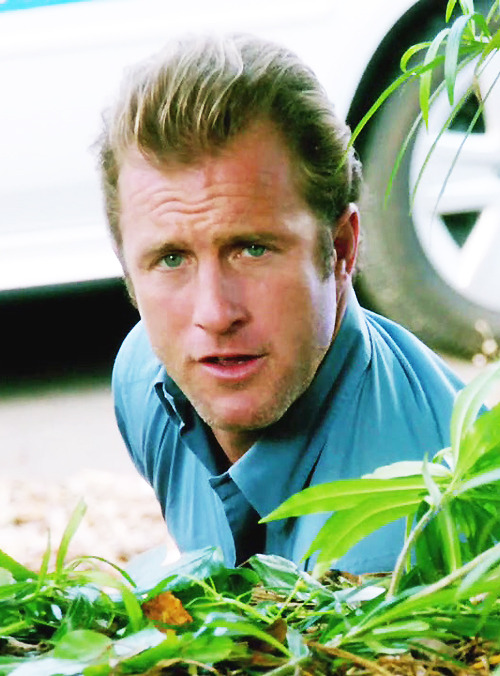 Hawaii Five-0, 3x15 - Hookman  * Danno's not amused, part 1