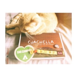 Just arrived from my trip and I come home to my kitten and my Coachella package. Perfection.  #3rdyeargoing #coachella #week2 #kitty #festival #spring #camping #catsofig #coachella2013