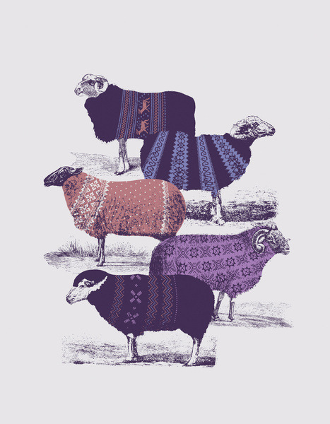 urhajos:'Cool Sweaters' by Jacques Maes