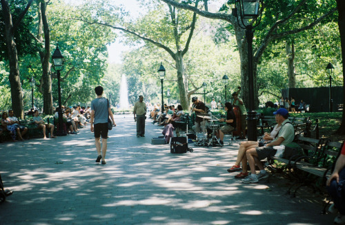my favorite area in central park.