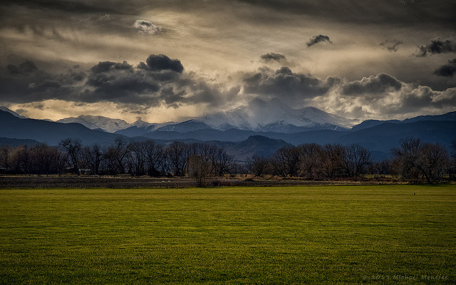 Front Range Spring Green Infusion by Fort Photo on Flickr.