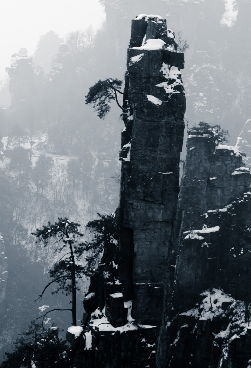 0rient-express:  Tianzi Mountain | by Xianyi Shen.