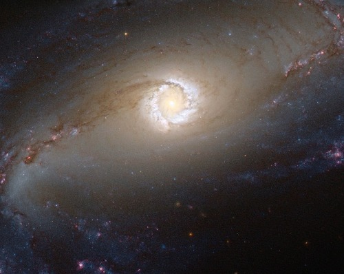 WIRED SCIENCE'S SPACE PHOTO OF THE DAY, 2013-STYLE!  The NASA/ESA Hubble Space Telescope provides us this week with a spectacular image of the bright star-forming ring that surrounds the heart of the barred spiral galaxy NGC 1097. In this image, the larger-scale structure of the galaxy is barely visible: its comparatively dim spiral arms, which surround its heart in a loose embrace, reach out beyond the edges of this frame.
