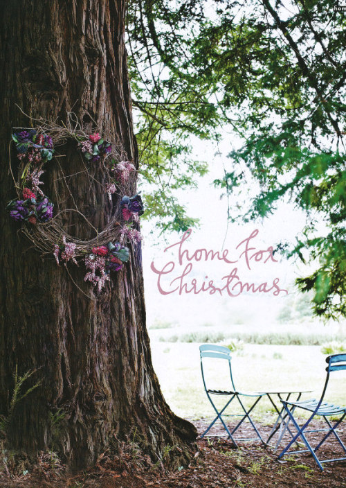rustic Christmas wreath | photo sharyn cairns