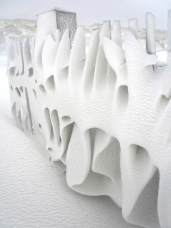 Snow fence in Terschelling, the Netherlands, via TYWKIWDBI