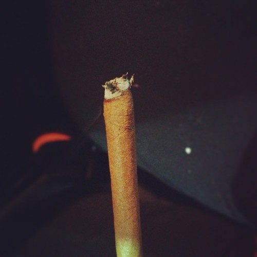 fat-bluntz:  Blunted.