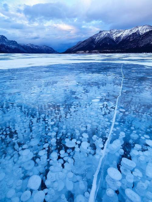 Frozen-Air-Bubbles-at-Abraham-Lake-Canada