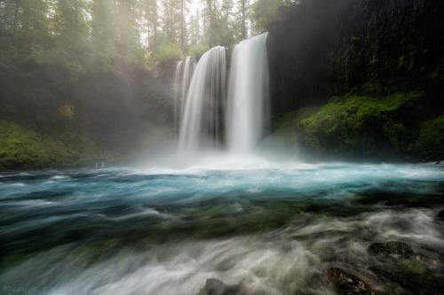 woodendreams:   (by Lance Rudge)