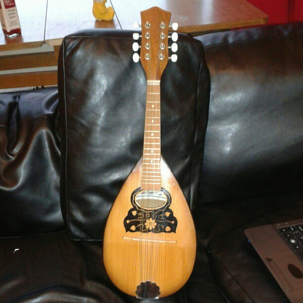 Mandolin; Almost certainly the most sensible purchase of my life…