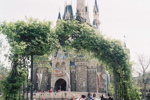 where dreams come true on Flickr.