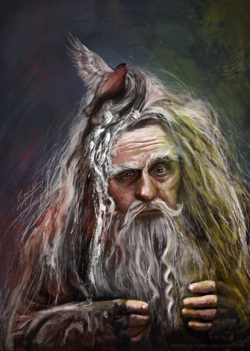 tenshinosekai:  Radagast the Brown by *AngelaBermudez