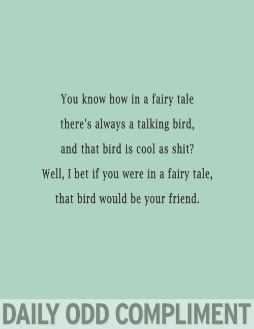"dailyoddcompliment:  ""Talking Bird"""