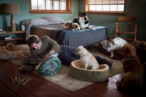 My favorite thing about Hannibal is how laid back Will Graham's dogs are.