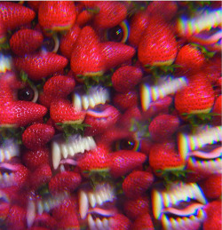 "Disco recomendado: Thee Oh Sees - ""Floating Coffin"""