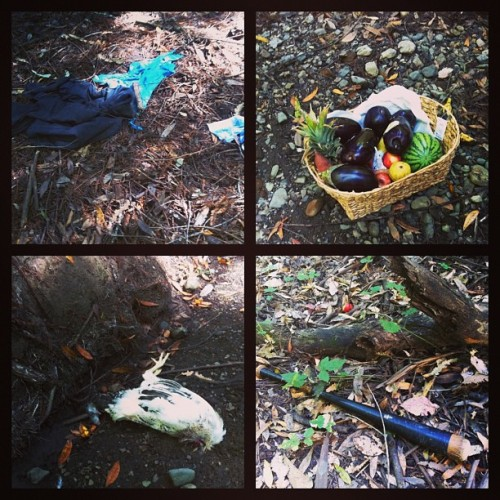 Found along a quiet trail along a stream: Torn up clothing, basket of produce, dead chicken and mouse, baseball bat and tomatoes. Canyon mystery.