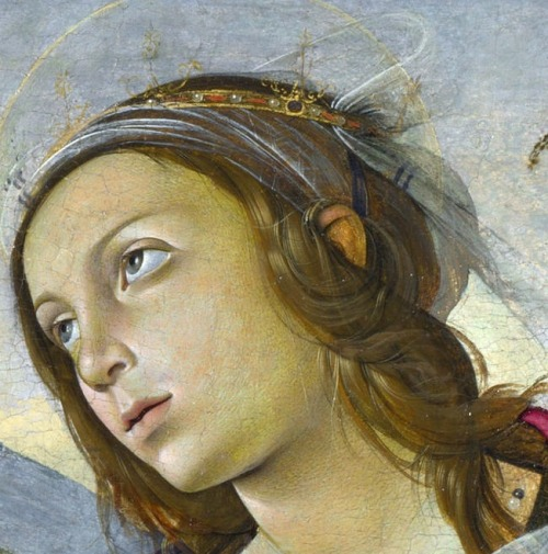 nataliakoptseva:  Raffaellino del Garbo - The Virgin and Child with Saints Detail