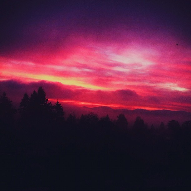Sunsets are overrated. These sunrises are where it's at. 😱😍 #sunrise #seattle #northwest #winter #view #morning #earlybird #earlybirdgetsworms #imeancatches #latergram