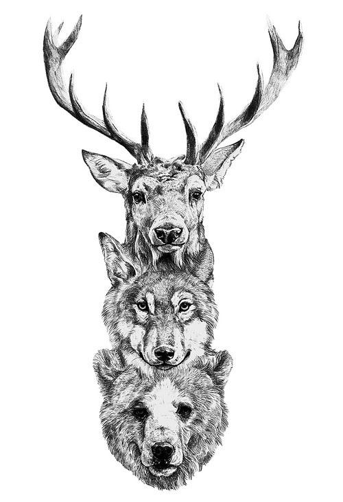 Deer Wolf Bear Tattoo Tumblr