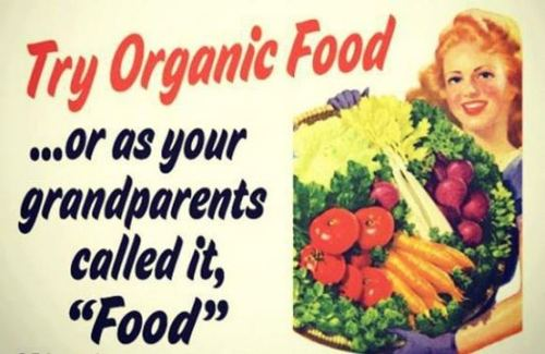 "Try Organic Food … or as your grandparents called it, ""Food""."