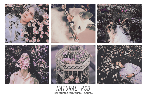 doppelherzpsds: NATURAL by doppelherz Don't redistribute or claim as your own.  Like or reblog if you download. Download - DA. #natural#cute psd#aesthetic psd#aesthetic#pastel#pale#pastel psd#pastel effect#vintage effects#filter#filters#gmfio#gmanfio