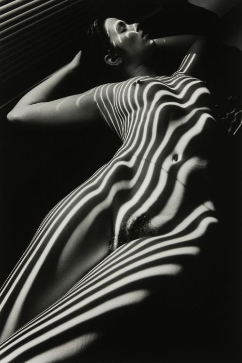 Nu zébré avec tête by Lucien Clergue, New York, 1998 Also