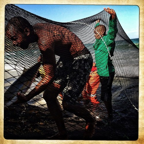 Cape Town, South Africa | January 30, 2013 - A group of local fishermen bring in their catch of Yellowtails at Fish Hoek beach. The large fish can be sold locally for R200 ($22.00) and the smaller for about R125 ($14.00). The fisherman pictured brought in about 200 Yellowtails in their nets. Photo by Charlie Shoemaker @Charlieshoemaker #CapeTown #SouthAfrica #fishhoek #fishhoekbeach #yellowtail