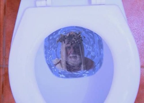 Hulk Hogan in a Toilet.