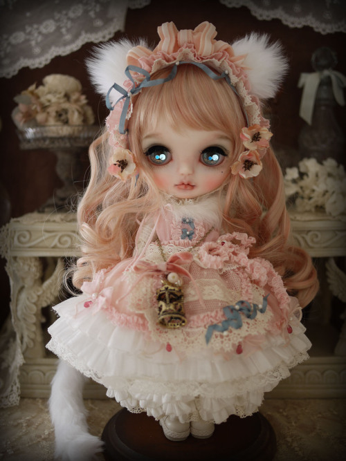 dollsociety:  sweet kitten by Milk Tea