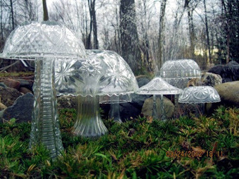 crystal mushrooms!!