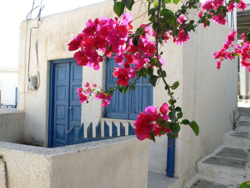 santoriniblog:  Ios, Greece By addicts