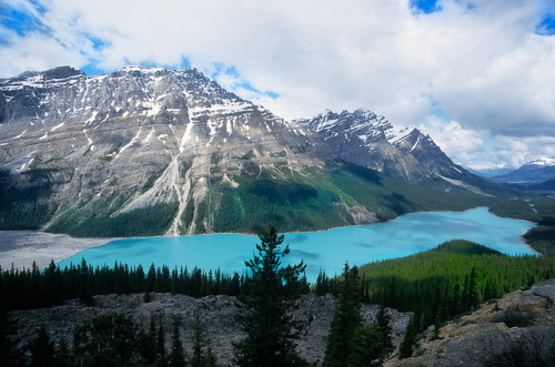 fourteen:  Peyto Lake by Guido Havelaar on Flickr.