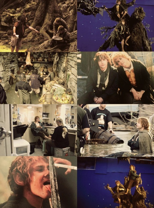 Dom&Billy + lotr set