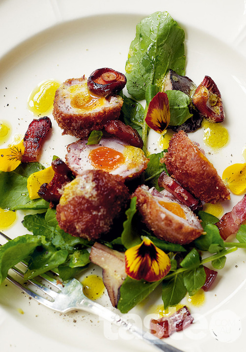 Make this special scotch quail egg salad part of an indulgent weekend lunch perfect for friends. (Recipe by Valli Little; Photography by Mark O'Meara)