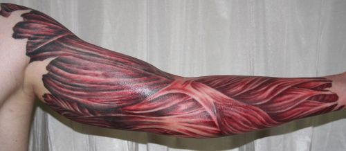 lovehestia:  arm with muscle tissue5 Tattoo by *2Face-Tattoo