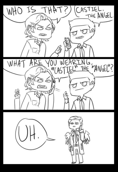 consulting-cannibal:   Basically how I imagine all the Wincest shippers felt once Cas was introduced.  Based on the notorious Jake from State Farm commercial!
