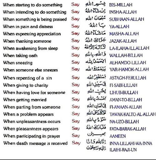 jasinbushi:  Every muslim should know these words, what they mean and when to say them because, we want the blessings from Allah.
